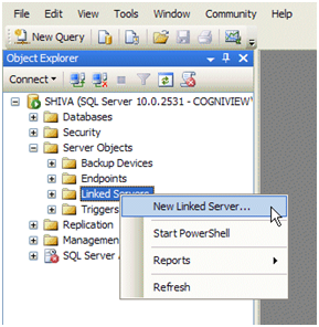 Supercharge your Excel Data with SQL Server Magic | CogniView
